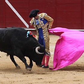 what to do to see in seville highlights bull fighting ring la maestranza